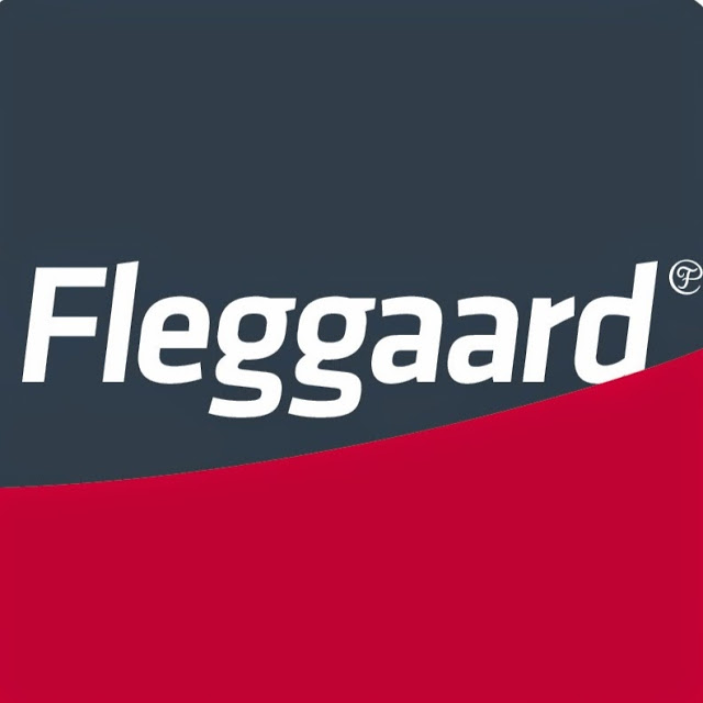 Fleggaard o 300 danesas desnudas en un spot
